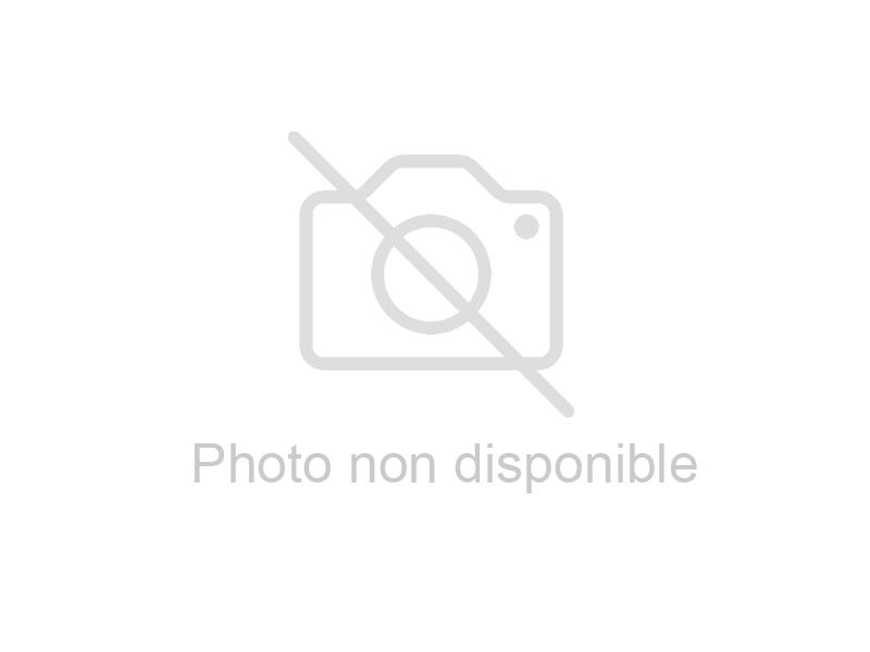 CHARIOT 800X530 MM 2 PLATEAUX SOUDÉS
